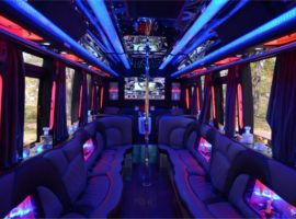 18 people party bus