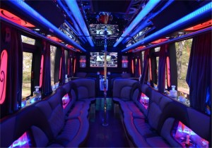 Party Bus 18 people