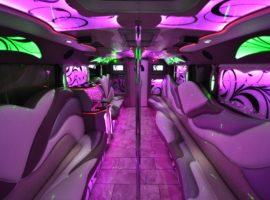 20 party bus interior