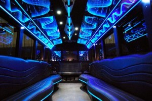 20 people party bus interior