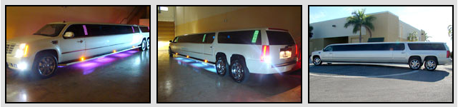 Tampa Limousines Amp Party Buses Limo Service Tampa Fl