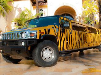 new-orleans-tiger-hummer-limo