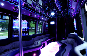 party bus rental 18 people