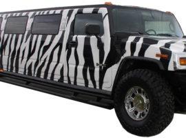 zebra-hummer-limousine-tampa-fl