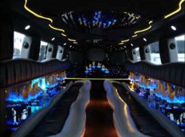 zebra-limousine-tampa