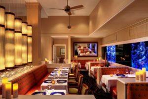 5 Best Restaurants Tampa Florida
